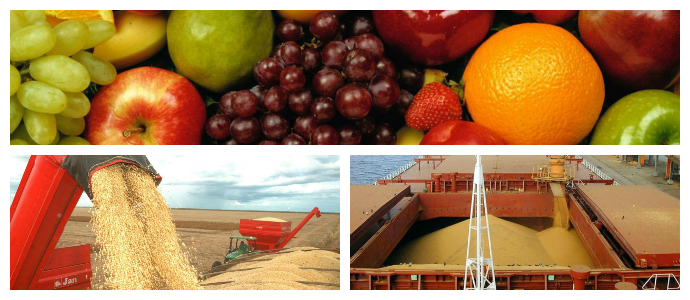 fotor_agricultura2